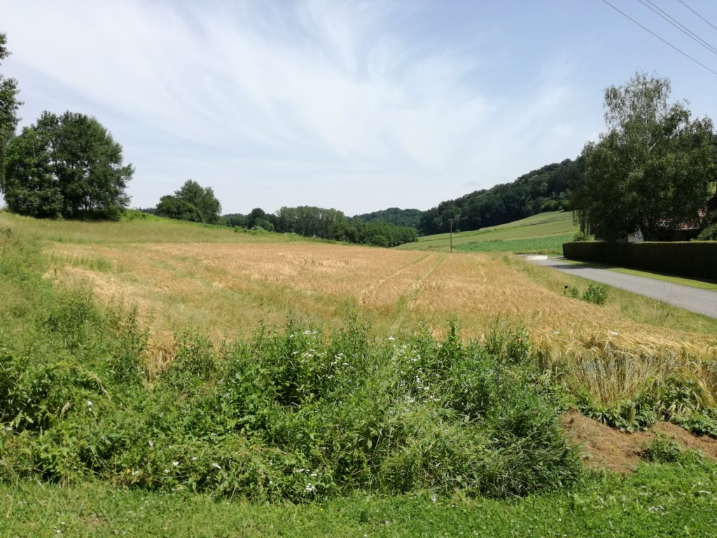 Building land for sale in Kukmirn near Güssing Burgenland